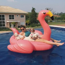 Boia Inflavel Flamingo Gigante Swimline